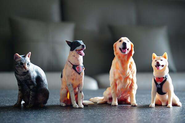 使用3D掃描器擷取人像或寵物的3D資料,透過Stratasys J750全彩3D列印機台,高解析度加上滿足Pantone的色彩品質和實現驗證標準,所製作出的3D公仔刺激消費者的視覺神經,引起市場熱議討論。