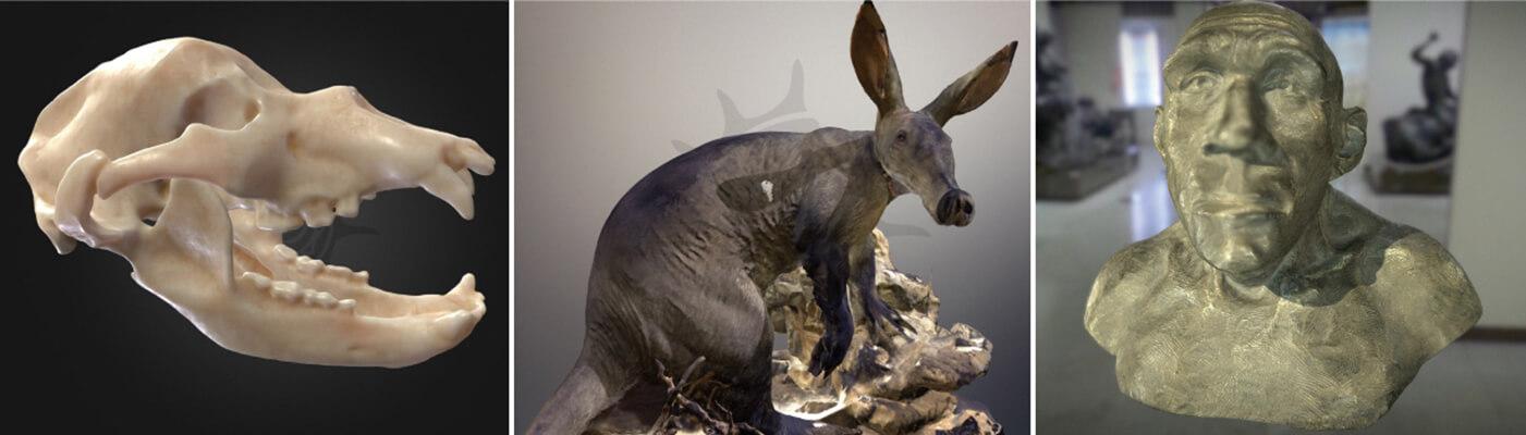 2017年歐洲規模最大的俄羅斯莫斯科達爾文博物館自然科學藏品,使用Artec Eva 3D掃描器,展示互動型教育。