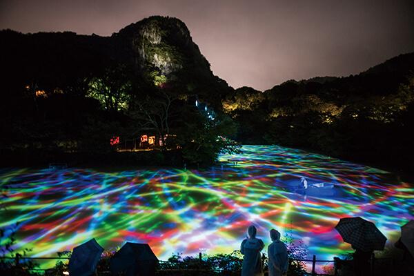 埼玉角川武藏野森林公園,推出同樣融合地景與光影的常設展「與橡樹森林共鳴的生命」